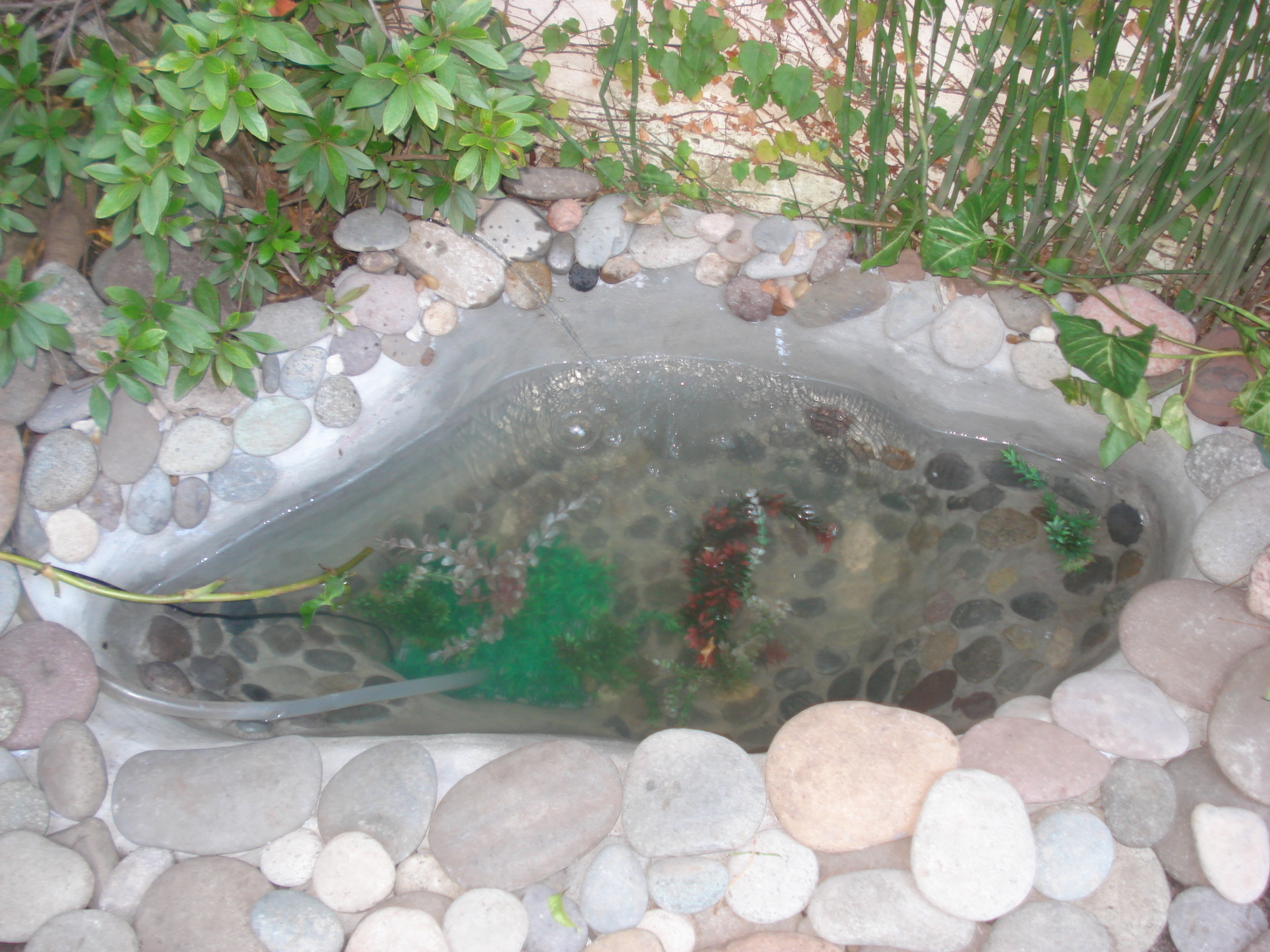 Piscinas para peces como hacer un estanque de jardin for Estanques para peces